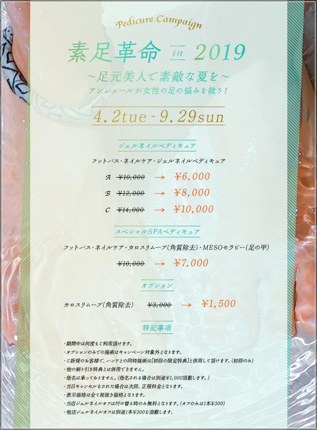 ペディキュアキャンペーン素足革命in2019 コース説明(ジェルネイル、スペシャルSPAペディキュア、オプション)