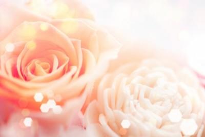 花と遊ぶ、赤井勝さんの出版イベントに手の病院サロンを出展させて頂くことになりました。